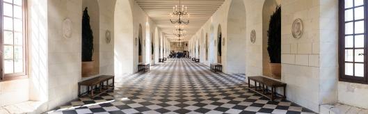 chateau-de-chenonceau-1095268_1920